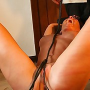 Hot babe bullwhipped