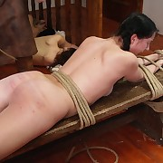 The females having their bodies caned