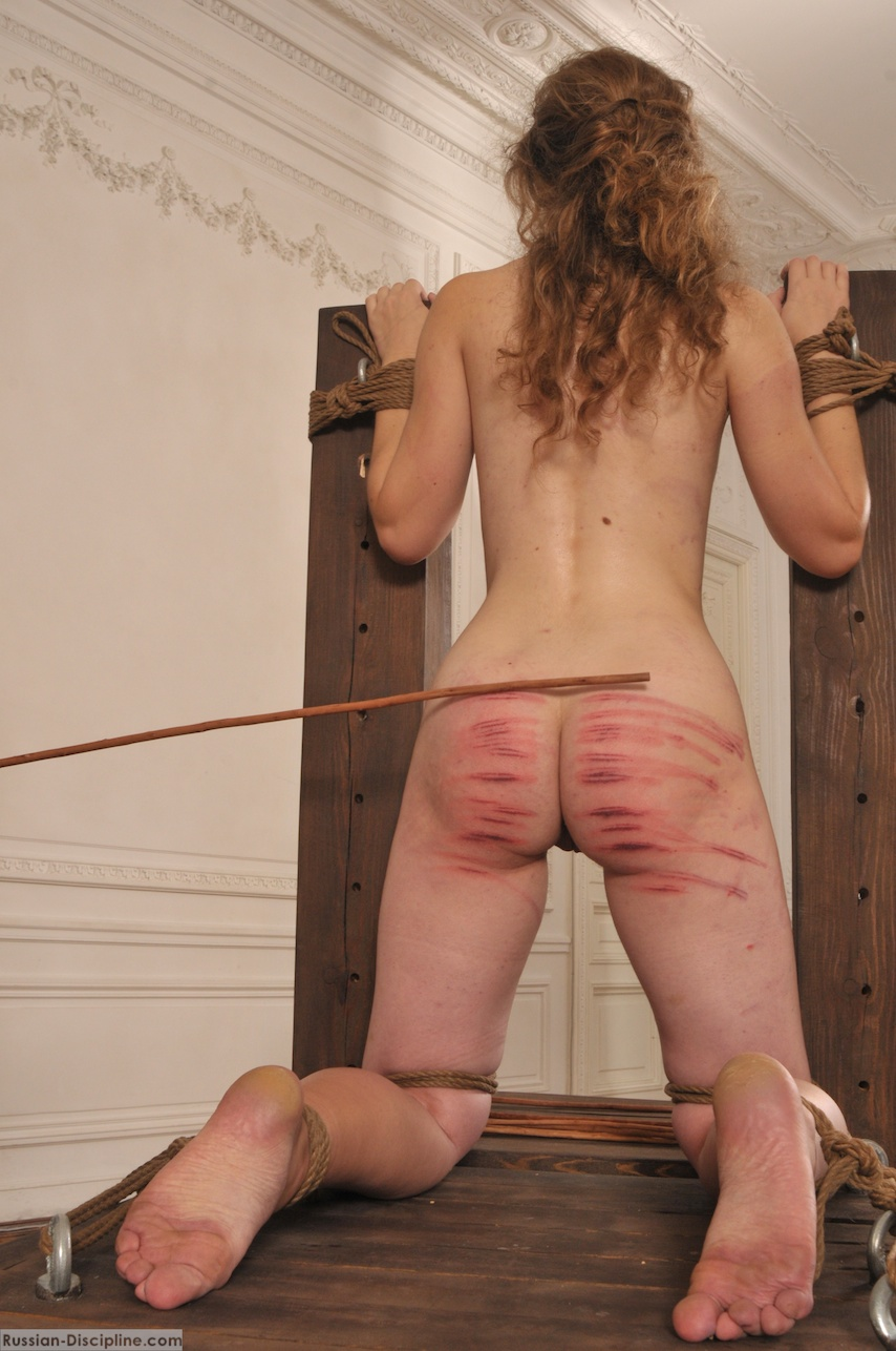 Apologise, but, caning bdsm tube