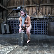 Subgirl Sasha loves being restrained, punished and violated.