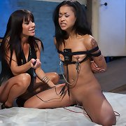 Gia DiMarco tries out a fresh voice-activated box that shocks the louder Skin Diamond screams