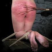 Lupus Pictures Picture