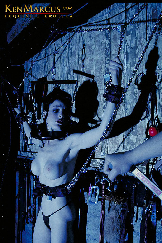 Bondage wall restraints — pic 15