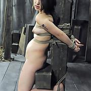Topgrl Picture