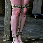 Hard Tied Picture