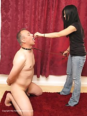 Male is used as chear and humiliated