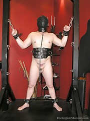 A domina tormented man on torture device