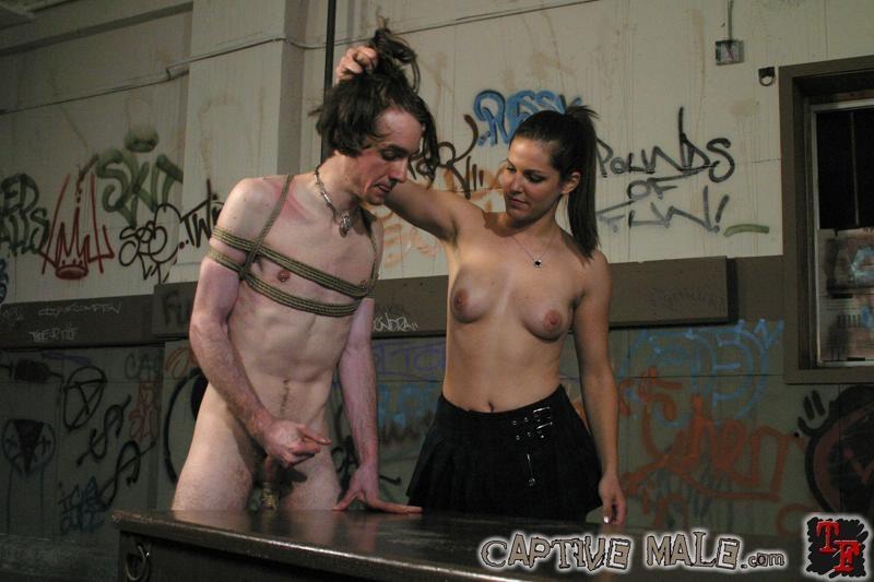 Captive Male Free Femdom