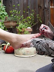 Kiss Her Foot Picture