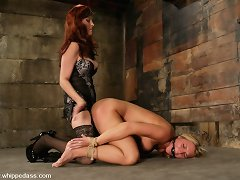 Blonde bound whipped and ding-dong fucked