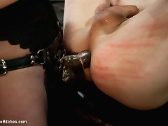 Perverted female domination and penis humiliation are here.