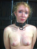 Real Time Bondage | Live HD Streaming BDSM Show, Bondage, Fetish, Orgasms, Hardcore Sex | High Definition Downloadable Videos & Photos!