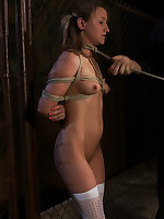 Girl bound in rope and forced to suck cock