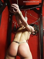 Tied chick in maledom