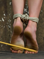 Twenty year old Ashlynn & ginger Odile succeed in shown slay rub elbows with ropes & defiled!