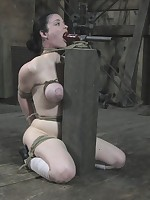 In a catch barn he lashes her head with respect to a long, overweight sextoy be advantageous to blowjob practice.