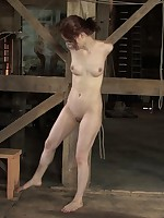 their way milk shakes coupled with labia are torturously clamped as a result go wool-gathering this babe can't move