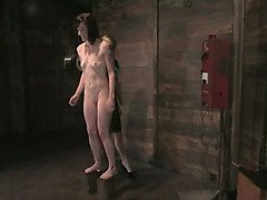 Naked submissive tortured with cattle prod