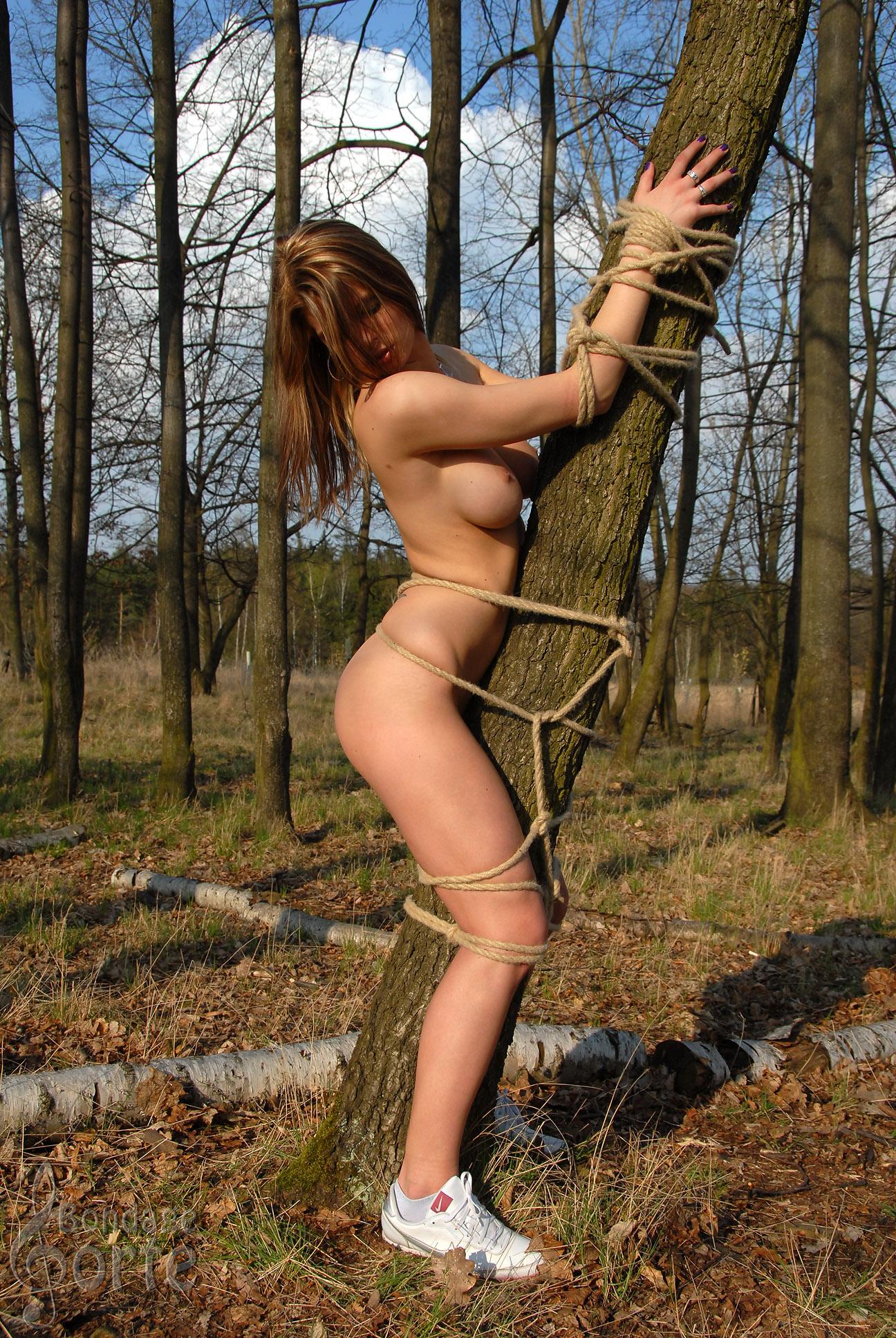 Привязанные к дереву порно фото 17 фотография