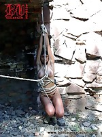 Bondage Vacation Picture