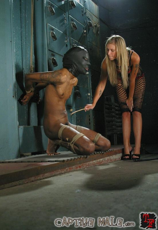 free video Femdom captive gallery male