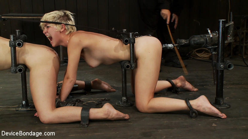 lesbi-pissing-bdsm-video-zakazat-po-pochte