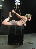 Fucked and bound Picture