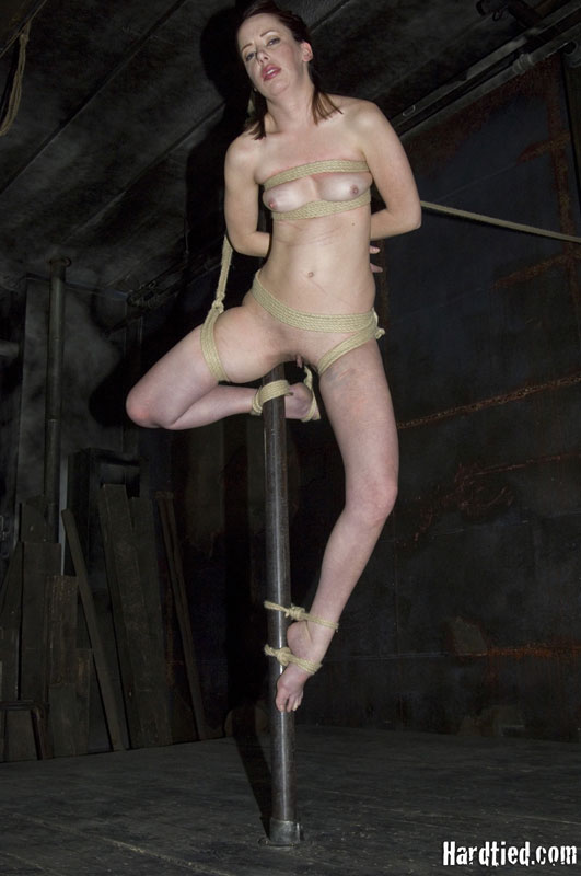 Bound to pole with rope excellent