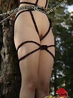 Nature Bondage Picture