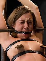 Device Bondage Picture