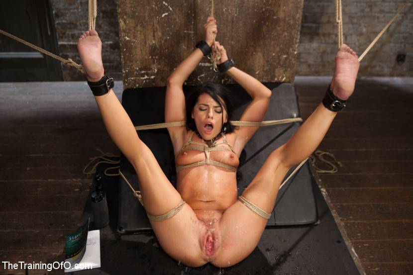 Agree, useful slave girl bondage anal sex criticising