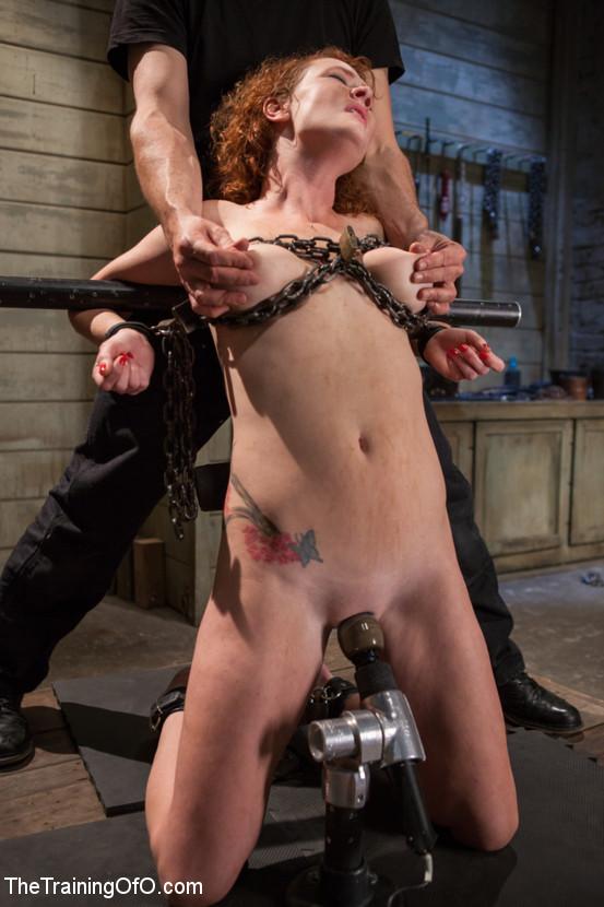 Found Training of sex slave female tumblr are