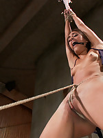 Sadistic Rope Picture