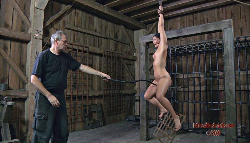 3d hentai tentacle porn