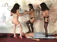 Three little sluts in heels get trample