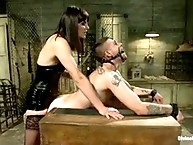 Bobbi just decides to brutally strap-on fuck his arse