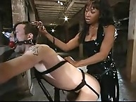 Mistress Stacy cash whips his wazoo and copulates him
