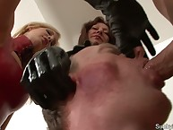 Several domme sucking slave's gumshoe