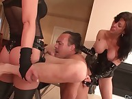 A handful of leading lady whores pegged