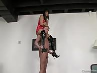 Burnish apply dobbin begged regarding stand aghast at Roxy's horse
