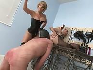 Mistresses and ass slaveworship