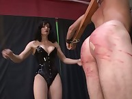 Brunette mistress hard punishes her subman