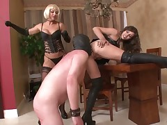 A couple of kinky dommes practicing BDSM with sub