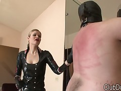 A human pony is dominated by miss
