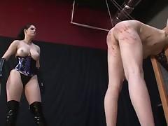 Mistress was punishing her sex slave