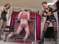 Hard tortures from rough dominatrix to sex slave