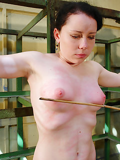 Breast whipping pics