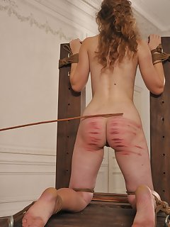 16 of Girl humiliated and caned severely