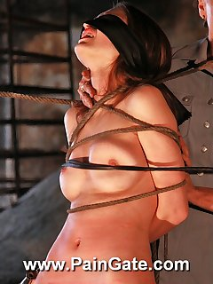 <!–-IMAGE_COUNT-–> of Ultra harsh whipping strokes