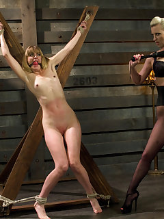 15 of Dominating A Dominatrix